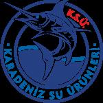 ksü_logo